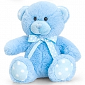 Baby Boy Blue Bear